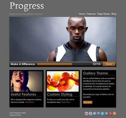 Organized Themes Progress Theme