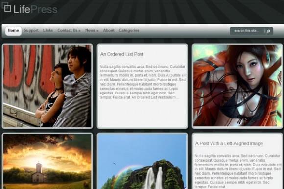 Wpnow LifePress Theme