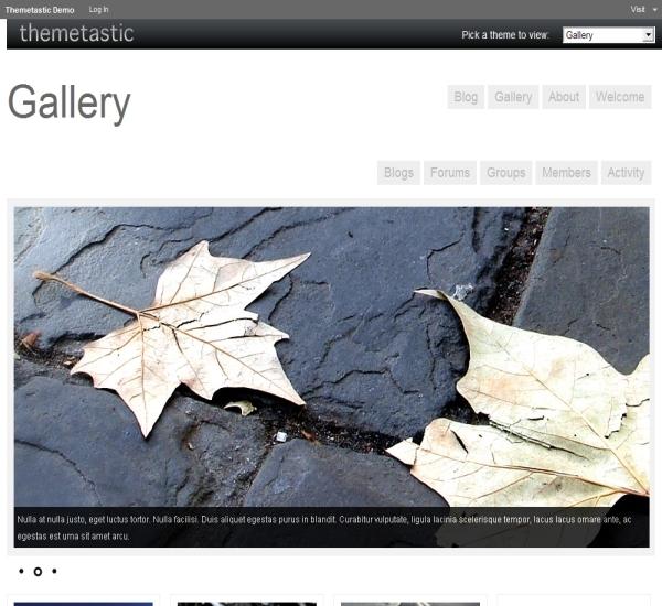 WPMU Dev Gallery Theme