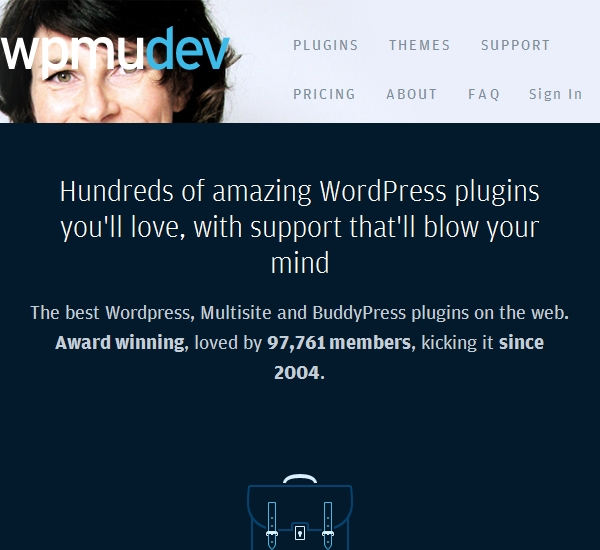 MPMU Dev WordPress Themes