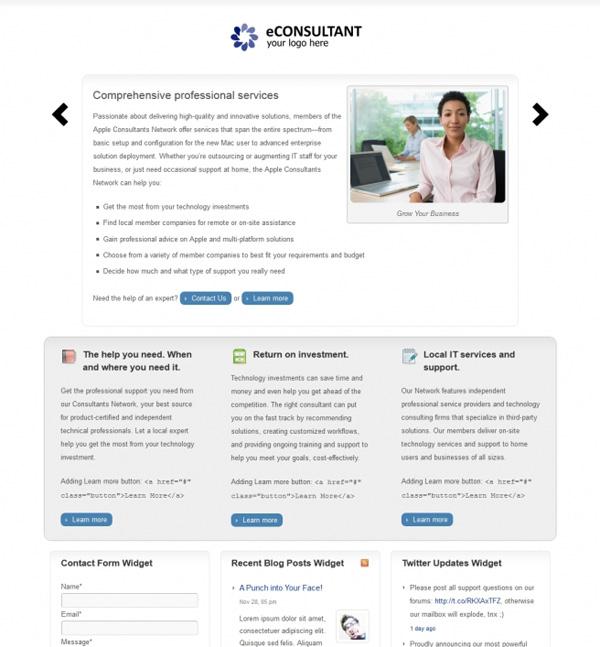 BizzThemes Econsultant Theme