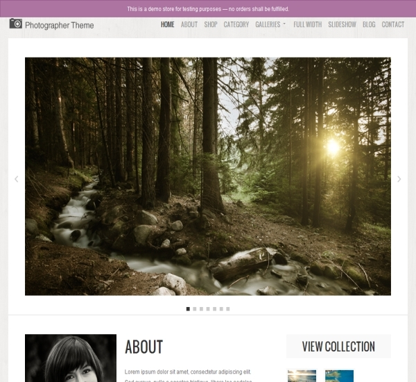 Organic Themes Photographer Theme