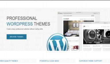 ThemeShift WordPress Themes Review
