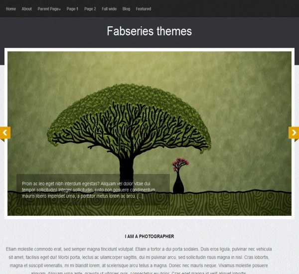 FabThemes Tiara Theme