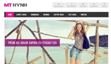 MT Hynh Premium Magento Theme Review