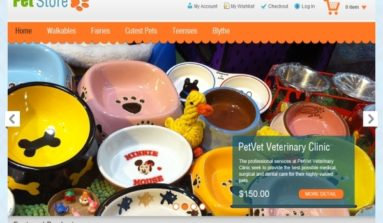 Pet Store Magento Theme Review