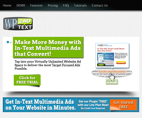 WP Text to Ad-Premium Advertizing management plug-in