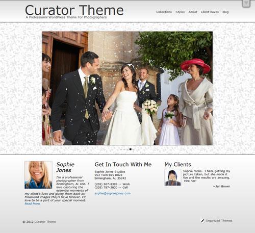 Organized Themes Curator Theme