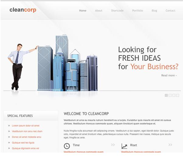TemplateSold CleanCorp Theme