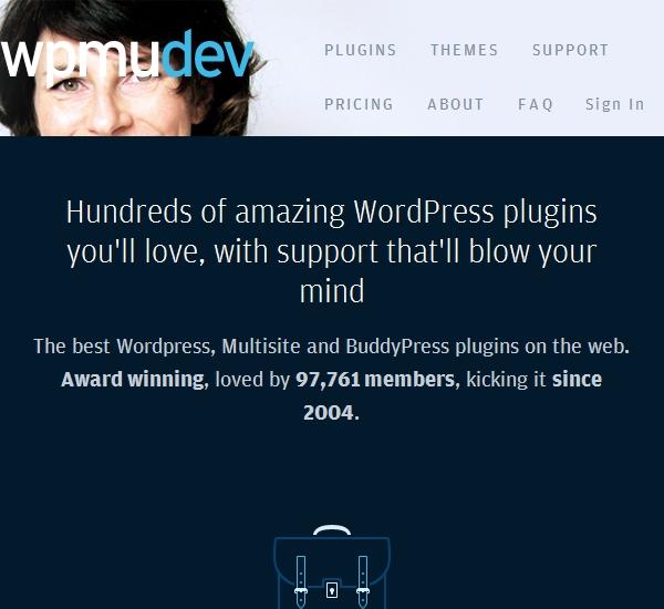 MPMU Dev WordPress Themes