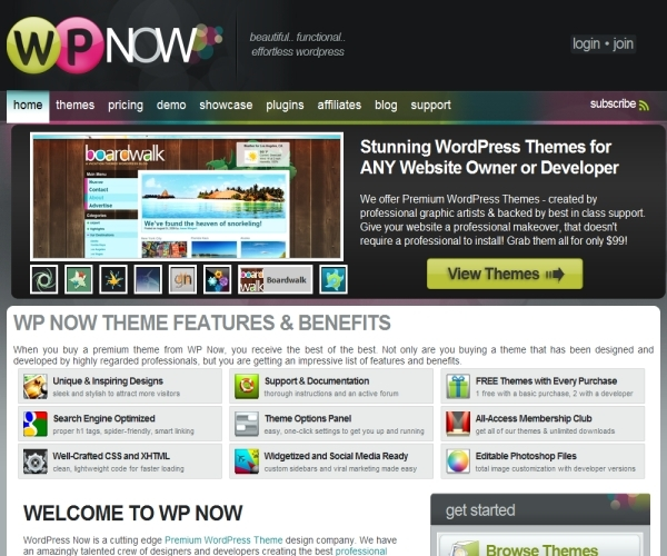 Wpnow Themes Review
