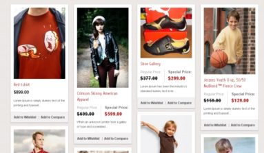 """""""PinStore""""Magento Theme Review"""