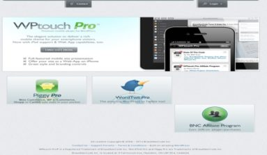 """""""Word Twit Pro"""" Plugin Review- A Premium Twitter publishing plug-in"""